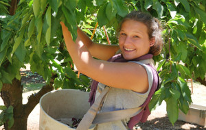 smiling-picker-biteriot-cherries