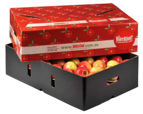BiteRiot-Box-red-apples