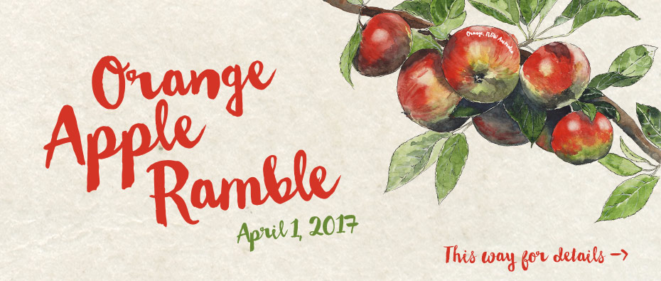 The Orange Apple Ramble 2017