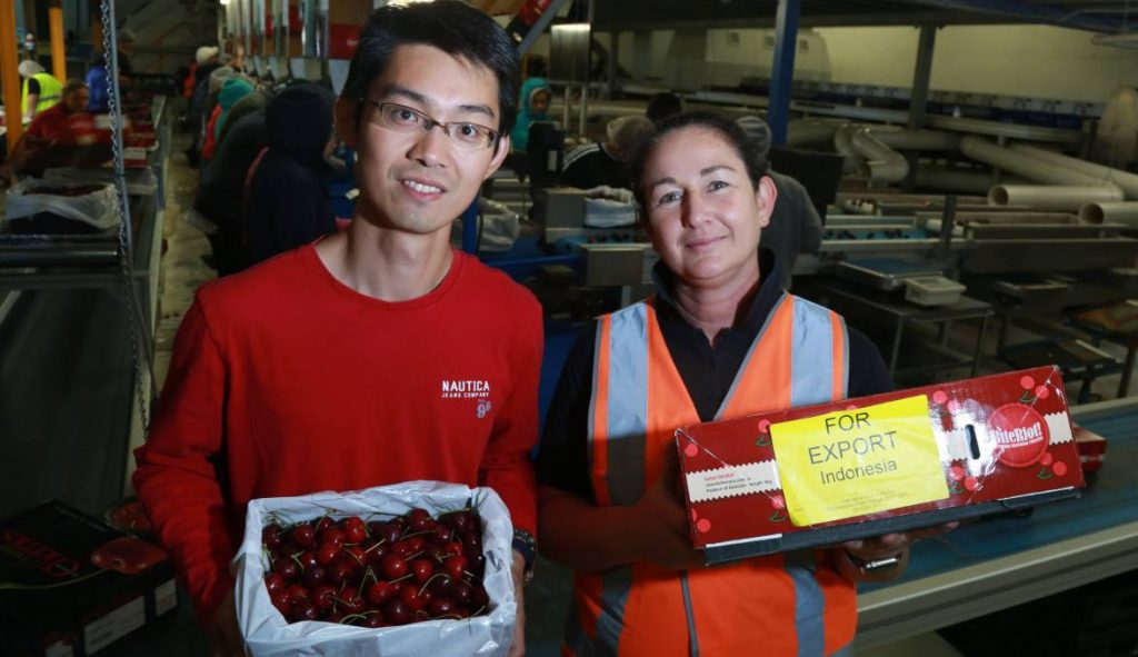 Orange orchard owner Vincent Chen with NSW Cherry Growers president Fiona Hall at her Caernarvon packing shed